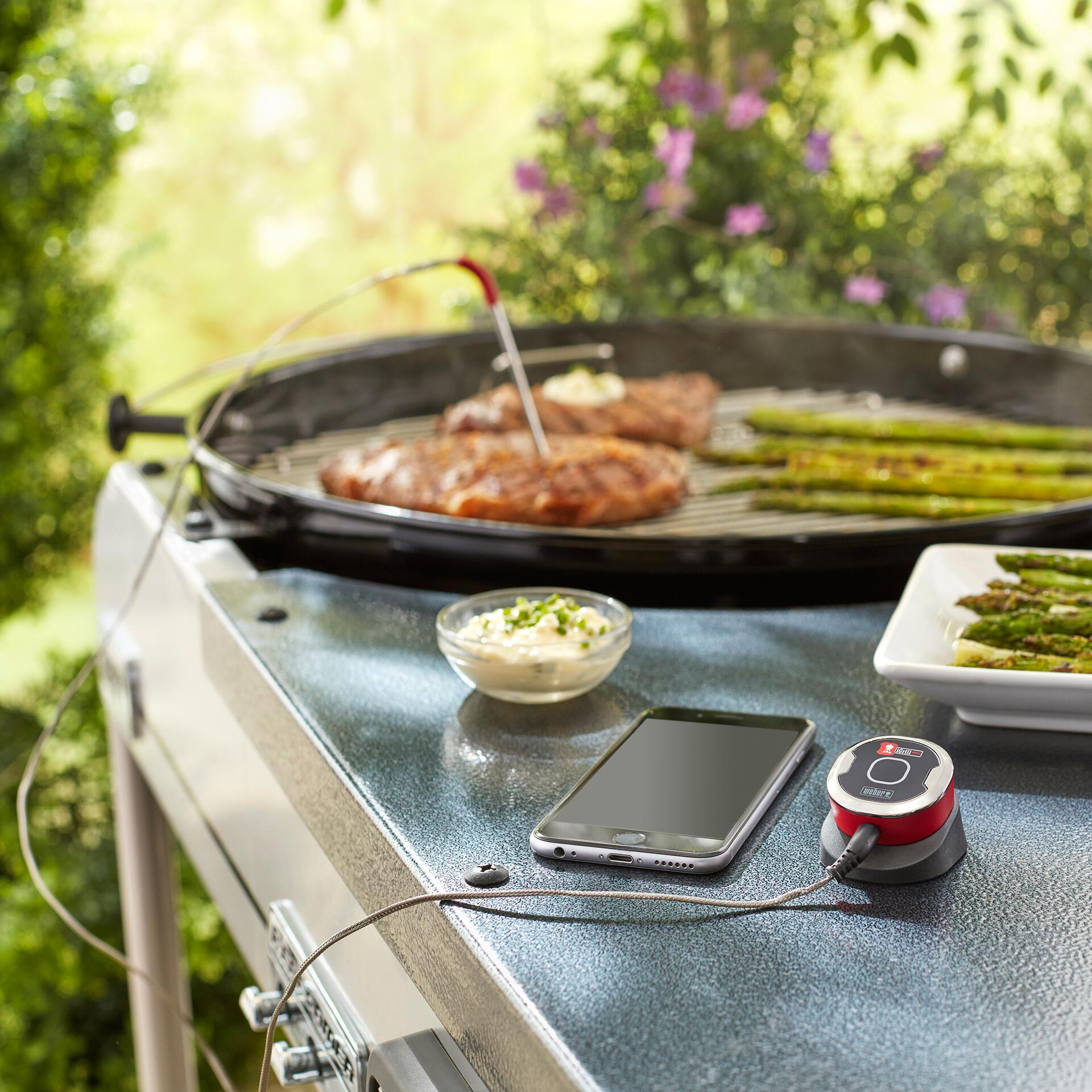 Weber iGrill Mini Bluetooth Thermometer 7220