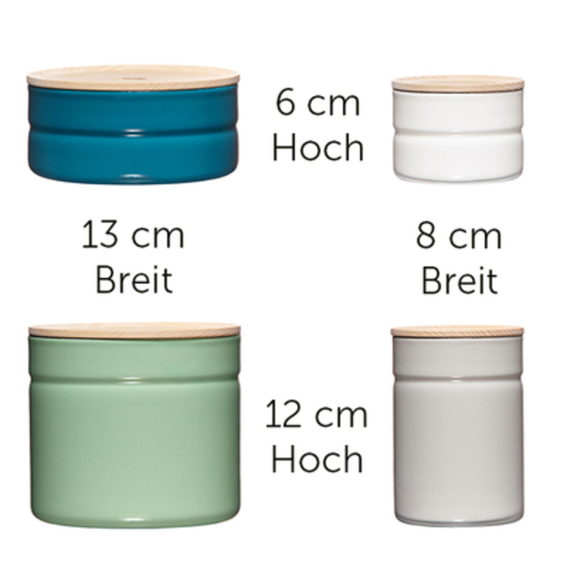 Riess Vorratsdosen Set Grün